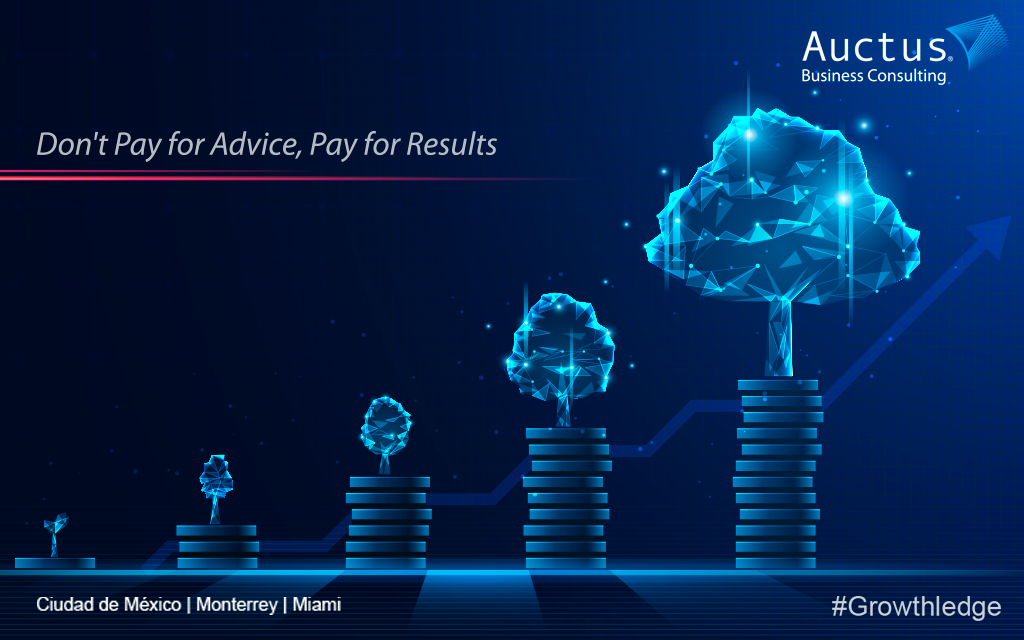 Auctus Business Consulting